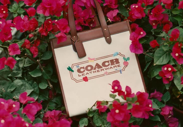 澳洲打折:Coach澳洲官网鞋包折上折 |澳洲值得买